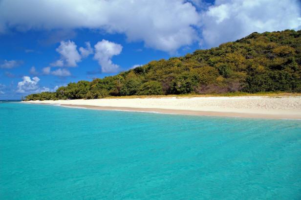 Turtle Beach On Buck Island In The Us Virgin Islands